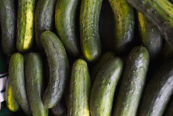 Fresh cucumbers add crispness to summer salads and sandwiches.