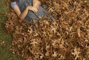 Leaf blowers create large piles of leaves.