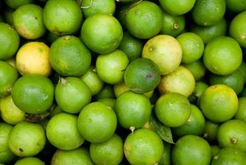 Mexican limes are also called Key limes.