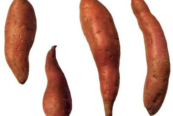 Sweet potato tuber color ranges from white to orange and red.