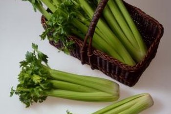 Celery is mostly water, which helps keep you full and hydrated when losing weight.