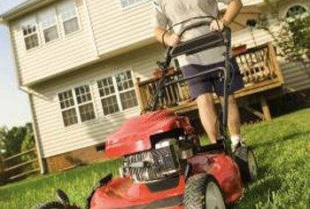 Mow the lawn slightly lower than usual and irrigate it lightly prior to dethatching.