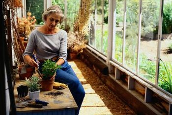 Recycling old windows for your greenhouse keeps them out of the landfill.