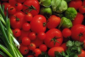 Determinate varieties of tomatoes are ready for harvest in a shorter amount of time.