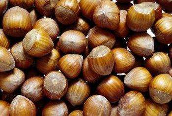 Hazelnuts are a concentrated source of vitamin E.