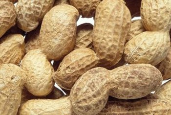 Peanuts contain more than 30 vitamins and nutrients.