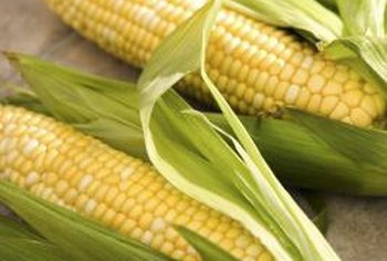Pick corn right before you cook it for the best flavor.