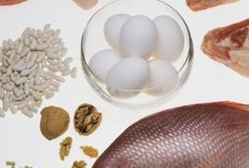 Protein foods promote muscle growth and development.