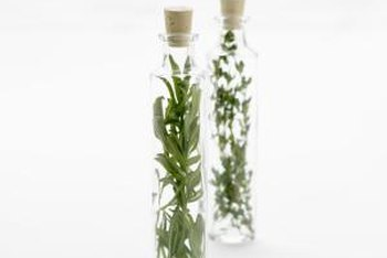Sprigs of herbs in skinny bottles make simple yet attractive displays.