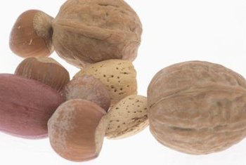 Hickory nuts are part of the fall harvest affected by insect pests.