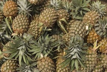 Pineapples can take up to two years to bear fruit.