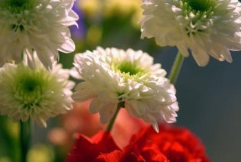 White chrysanthemums are striking next to jewel-tone flowers.
