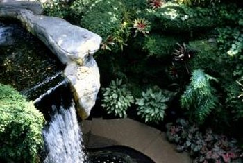 Choose water-loving species to landscape your rock waterfall.