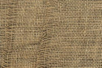 Burlap fabric protects tender plants from icy weather.