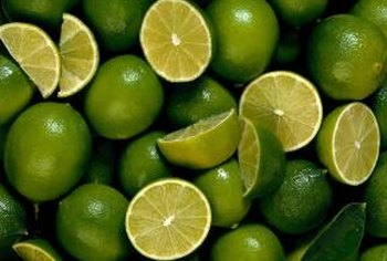 Color is the first indicator of a ripe lime.