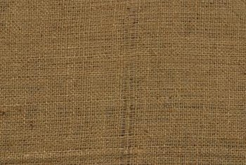 Use strips of biodegradable burlap to support and retrain split arborvitaes.