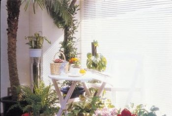 Palm trees can be incorporated into many decor styles.