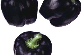 Some bell peppers turn a beautiful purple between green and red stages.