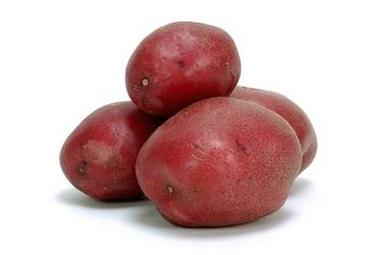 Partially shaded gardens can successfully host red potatoes.