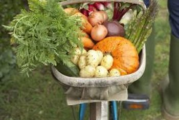 You can produce a wheelbarrow full of vegetables on a small budget.