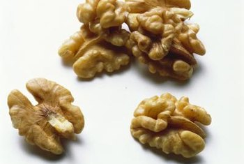 Walnuts are closely related to pecans and hickory nuts.