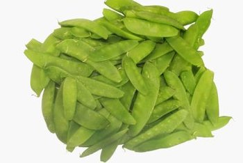 Snow peas are a popular addition to stir-fries and salads.