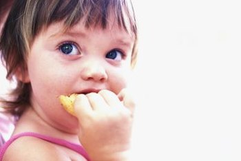 Offer your toddler a small meal or snack every few hours.