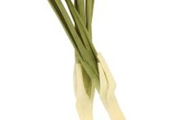 Attacks on green onions can come from the air or from the soil.