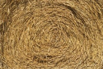 Straw and salt marsh hay are better than pasture hay for seeding lawns.