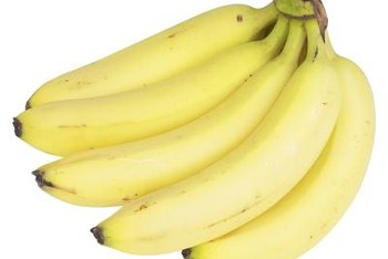 Banana trees can be ornamental, or they can produce fruit.