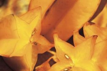 The slender, pale brown star fruit seeds are edible.