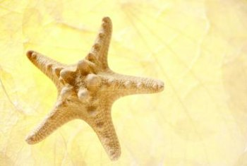 Use a starfish stencil to decorate beach themed pillowcases.