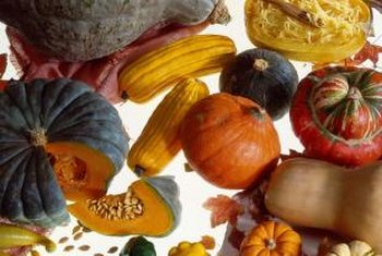 Winter squash affected by black rot include hubbard, acorn and butternut.