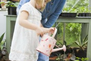 Provide your child with children-sized gardening tools to help them grow their plants.