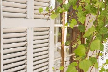 Many shutters are easier to maintain if you remove them from the house first.