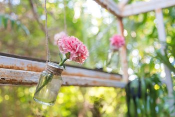 Hanging a single-flower vase on the wall or window keeps delicate blooms safe from pets.