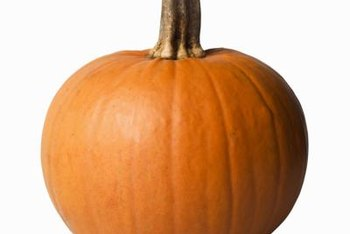 "Turn this plain pumpkin into the ""Cat in the Hat."""