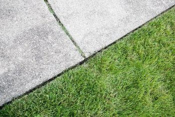 A lawn edger prevents the grass from growing over the sidewalk.