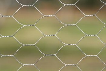Chicken wire commonly comes in rolls 25 or 50 feet long.