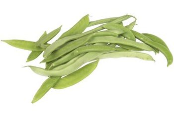 Butter beans grow in long pods.