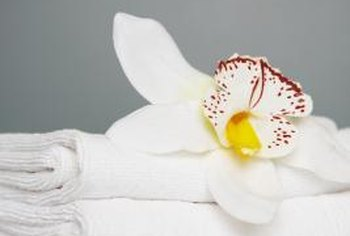Looks can deceive, as even clean towels can breed bacteria.