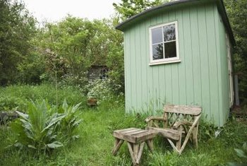 Do not plant around the perimeter of an unattractive shed, as this will draw unwanted attention.