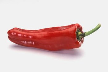 The thin, dry skin of the cayenne pepper makes it suitable for drying.