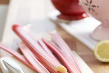 Rhubarb stalks resemble celery.