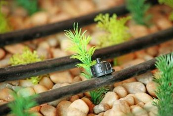 Using drip-tubing irrigation can conserve water.