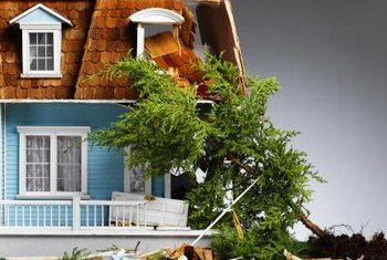 Homeowners insurance sometimes covers damage due to toppled trees.