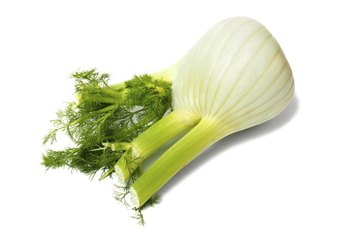 All parts of the vegetable fennel are edible.
