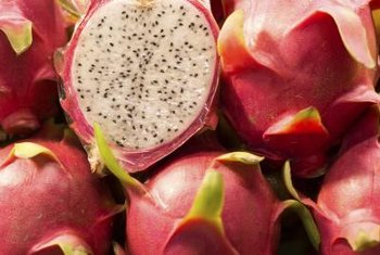 Dragon fruit plants produce a mildly sweet pulpy fruit that can be eaten raw or used to make drinks.