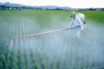 Fertilizers and pesticides provide agricultural and economic benefit but also cause environmental and health problems.