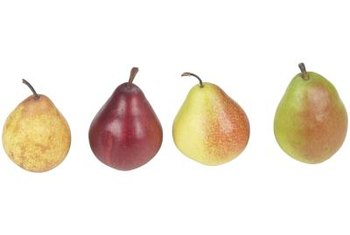 If you can't decide on one variety of pear, you can enjoy several through grafting.